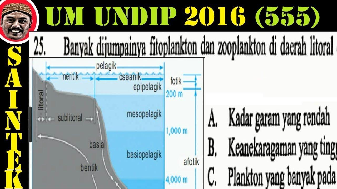 UM UNDIP 2016 ,saintek 555 , Biologi, Pembahasan No 25