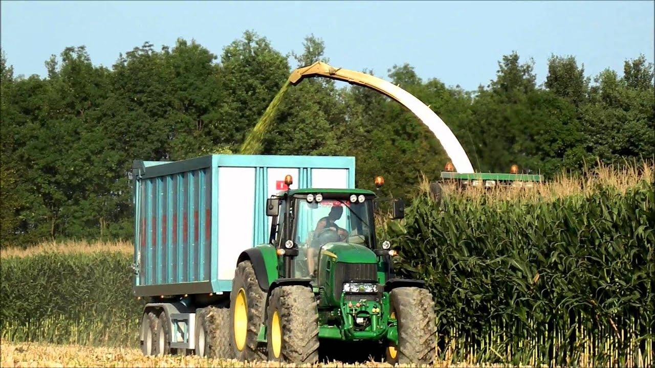 Risultati immagini per insilato di mais