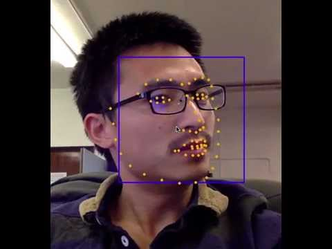 Facial landmarks detection in videos
