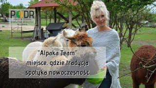 """""""Alpaka Team"""" - miejsce, gdzie tradycja spotyka nowoczesność"""