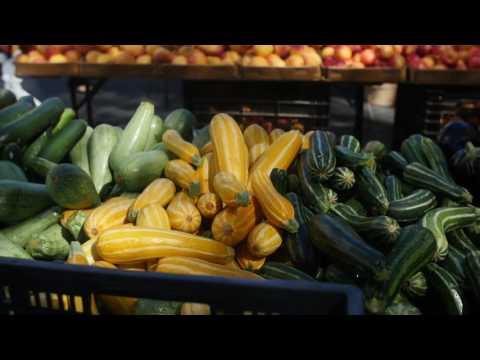 GrowNYC Farmers Market on New York for Seniors TV