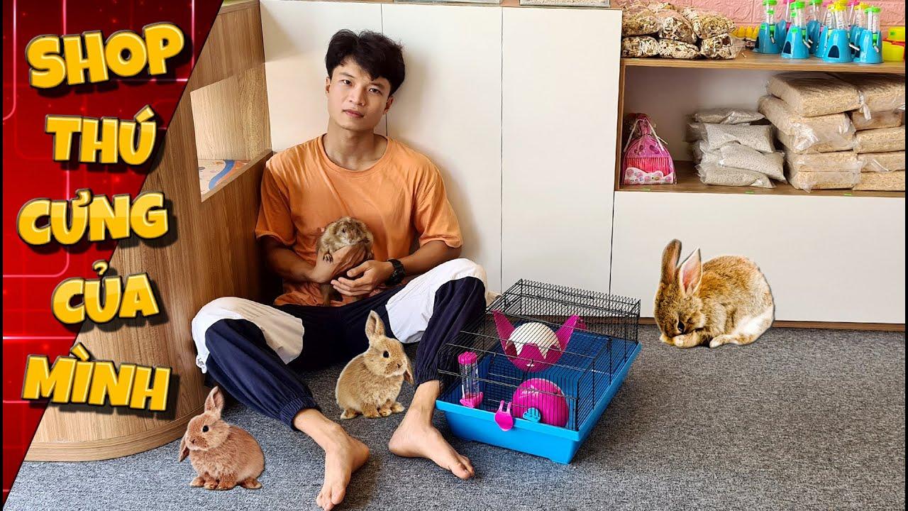 Tony Mở Cửa Hàng Thú Cưng Hamster – Hết Tài Sản Luôn