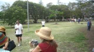Schnauzer Picnic, Brisbane, Australia,nov2008