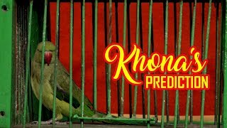 Parrot predicts match results of Portugal vs Spain | Khona the Parrot