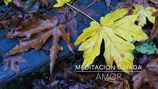 AMOR: Meditacion Guiada de 15 Minutos | A.G.A.P.E. Wellness