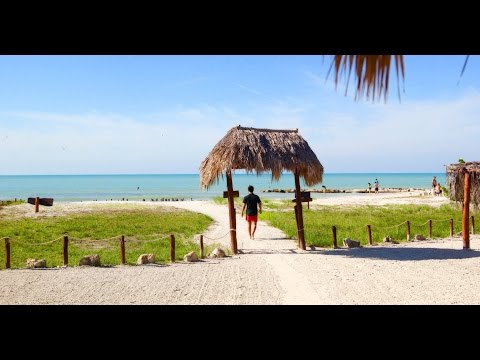 Wild nature - Holbox Island in January [GoPro HERO4 Session]