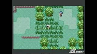 Pokemon Emerald Version Game Boy Gameplay_2004_09_17_2