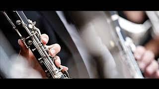 Sorinel de la Plopeni 2019 Hora la acordeon si clarinet
