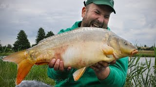 Carps caught on banana with halibut / carp fishing in Poland