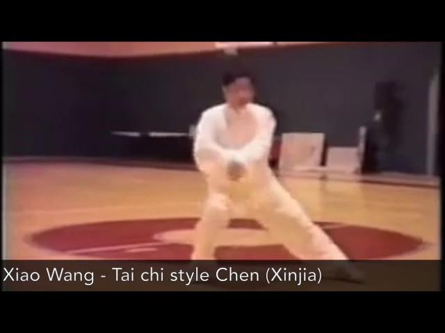 Chen Xiao Wang - Tai Chi style Chen Xinjia Yilu [陈氏太极拳新架 Taijiquan style Chen]