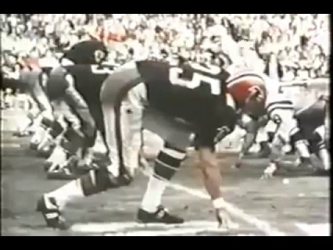 1966 Atlanta Falcons First Campaign