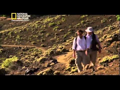 افلام وثائقية | أرض الكارثة | تسونامى عملاق | HD