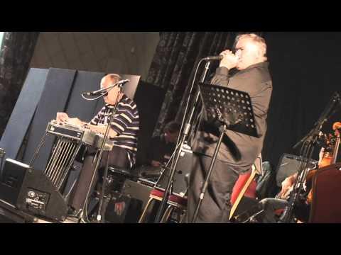 Irish Steel Guitar Festival 2010.. David Hartley