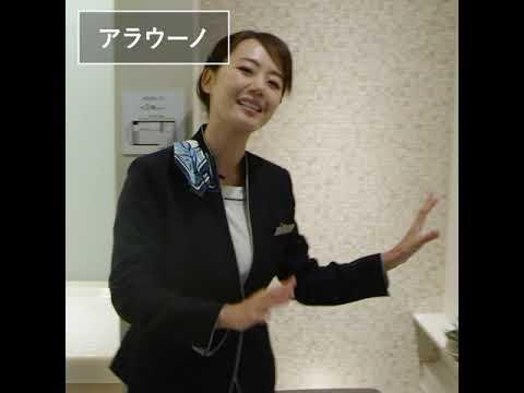 トイレ掃除が全自動に アラウーノ L150シリーズ