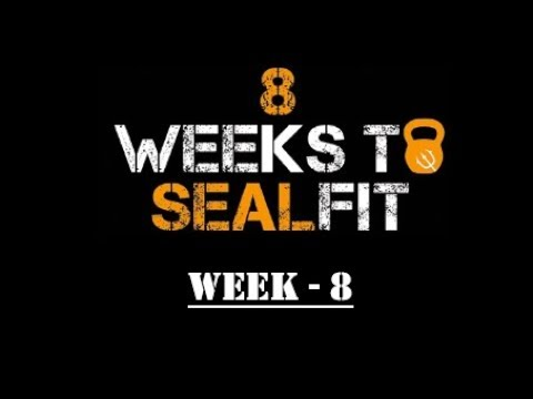 8 Weeks To Sealfit -  Week 8