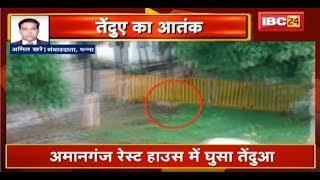 Panna Amanganj Rest House में तेंदुआ घुसा  तेंदुए के हमले से युवक घायल