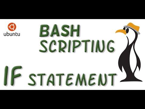 BASH Scripting Simple IF Statement