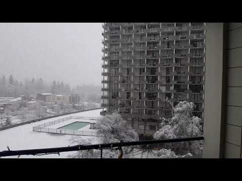 Vancouver & Snow December 19th, 2017