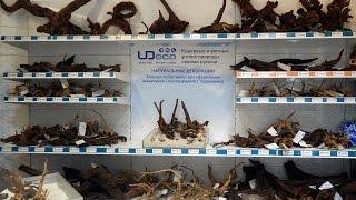UDeco - Камни и коряги для аквариума в супермаркете Живая Вода в Москве