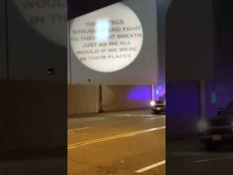 Vegan Batman Projector Light Over Slaughterhouse in LA