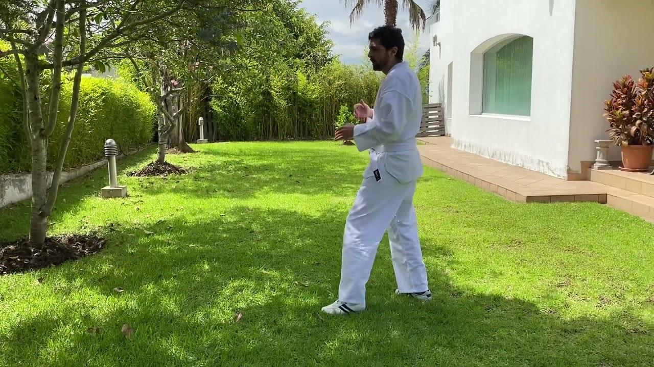 Taekwondo - Student-Created Lesson - Pivoting Drill