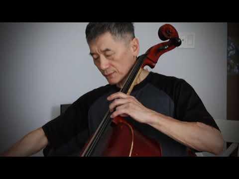 Träumerei Schumann Piano And Cello 梦幻曲-舒曼 钢琴大提琴合奏