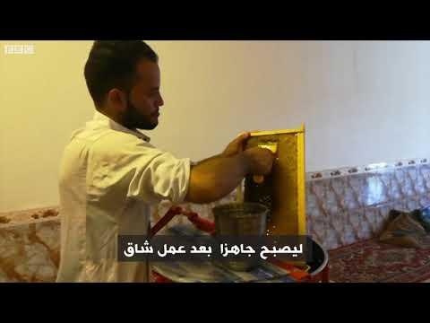 أنا الشاهد: المشاكل التي تعرقل إنتاج العسل الطبيعي محليا في العراق  - 11:53-2019 / 9 / 20