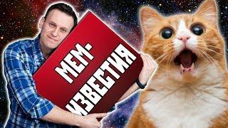 Мемы в космосе / Успех Навального / Новые опыты с котами