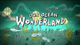 Our OCEAN. WONDERLAND