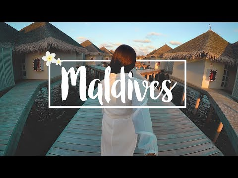 Honeymoon in the Maldives  | Indian Travel Vlogger