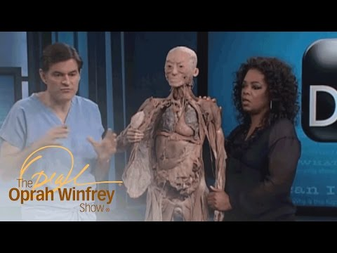How the Human Body Deals with Stress | The Oprah Winfrey Show | Oprah Winfrey Network