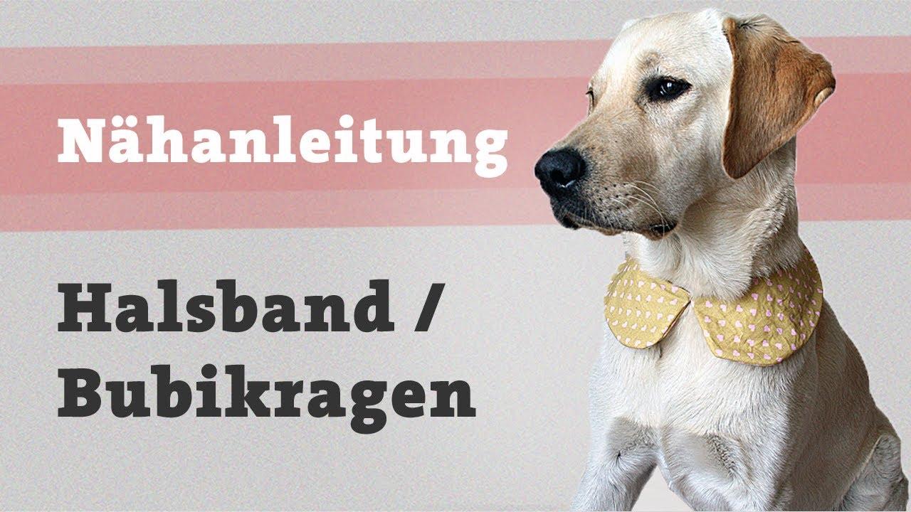 DIY Hundehalsband selber machen  Hund Halstuch Halsband