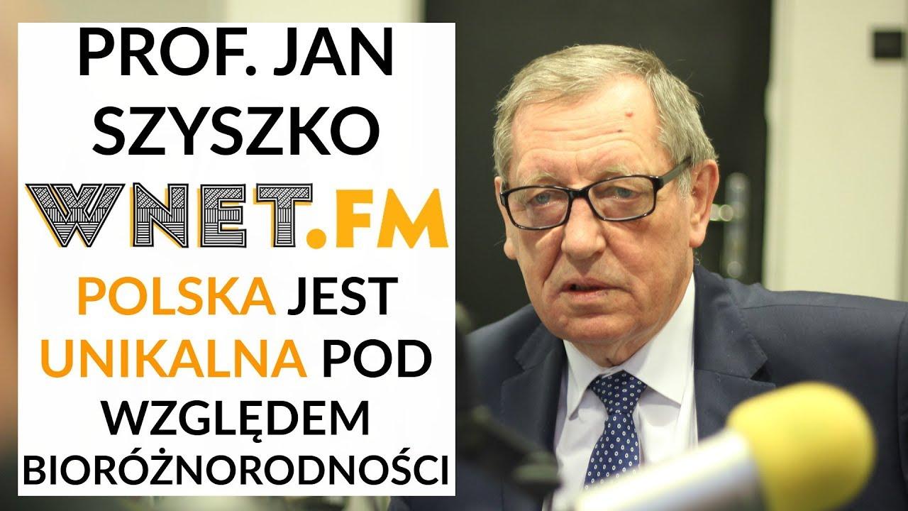 Prof. Szyszko: Na Zachodzie jest lawinowy zanik poszczególnych gatunków. U nas jest ich w nadmiarze