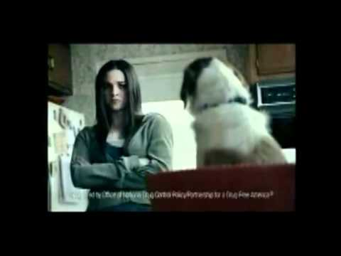Anti Weed Commercial. Talking Dog. Original