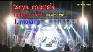 Terlanjur sakit Tasya rosmala live expo 2018 lumajang official video