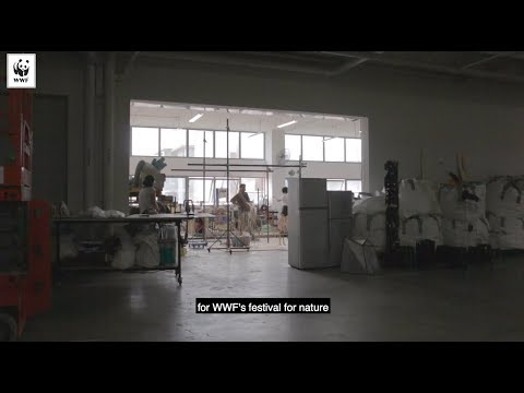 Earth Hour 2019 - Behind-the-scenes of the Nature's maze | WWF-SINGAPORE