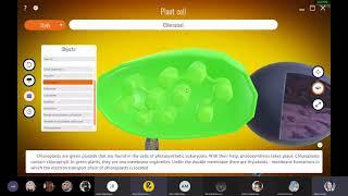 Применение интерактивной программы Roqed Science на дистанционном обучении