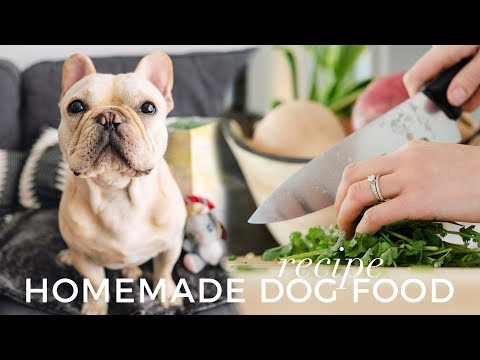 Homemade Dog Food Recipe | How To Cook Food For Your Frenchie