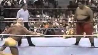 Hulk Hogan vs Yokozuna - King of The Ring 1993 - Part 1/2