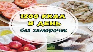 1200 ККАЛ В ДЕНЬ без заморочек/Худею