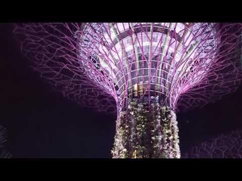 Singapore trip Places Buildings Vacations Travel  Enjoy Architecture Public Documented Availaible