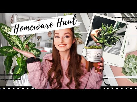 POUNDLAND, IKEA, MATALAN + MORE! HOMEWARE HAUL!! Houseplants, Prints, etc!