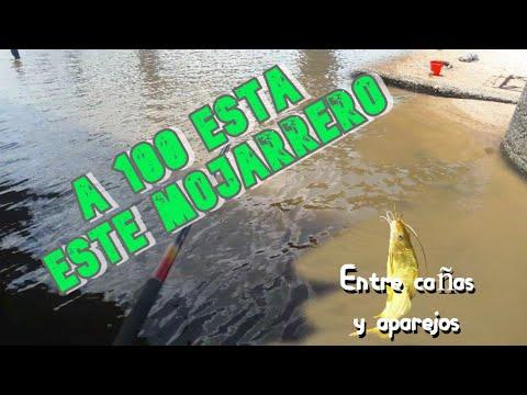 Pesca variada con el Mojarrero // Uruguay, Montevideo, Barra de Santa Lucia// Entre cañas y aparejos