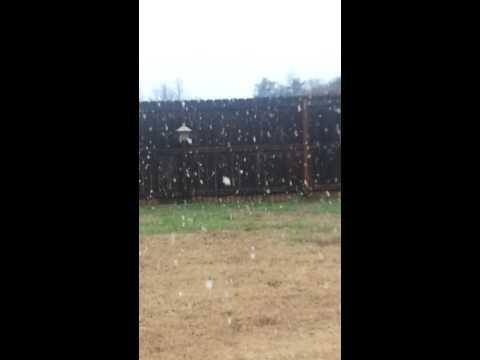 SC November snow globe