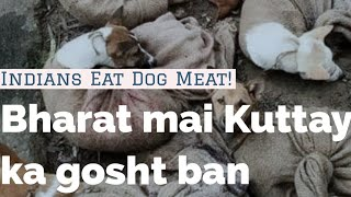 Dog Meat Banned In India | Indians Eat DOG MEAT | Nagaland mai Kuttay ka Maas | FACTS & FIGURES |