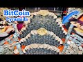 BITCOIN PYRAMIDS Inside The High Limit Coin Pusher Jackpot ...
