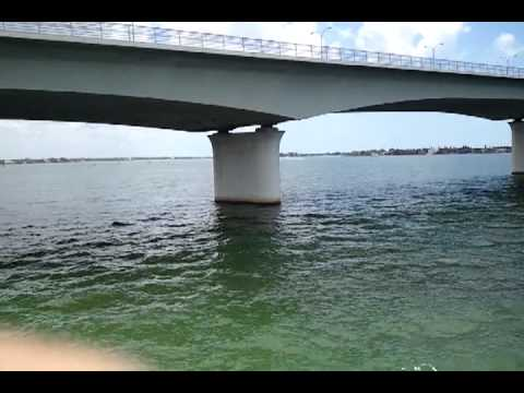 Ringling bridge fishing pier sarasota florida youtube for Sarasota fishing pier