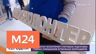 Обучение волонтеров к ЧМ-2018 началось в  столице - Москва 24