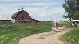 Max on the Farm: Barns and cow delivery