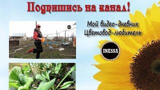 Обзор урожая 2015 ))) Рекламное видео канала.(, 2016-04-15T23:22:25.000Z)
